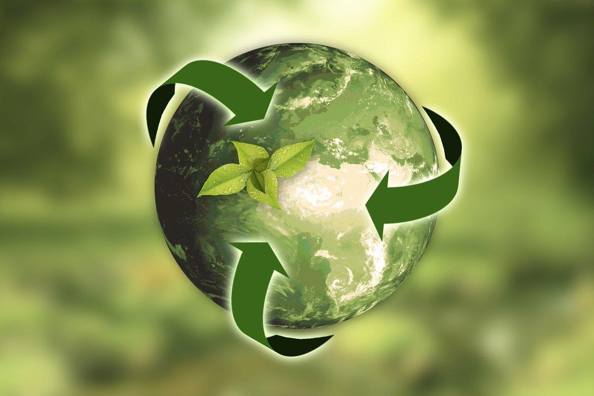 Китай вносит большой  вклад в мировую экологию