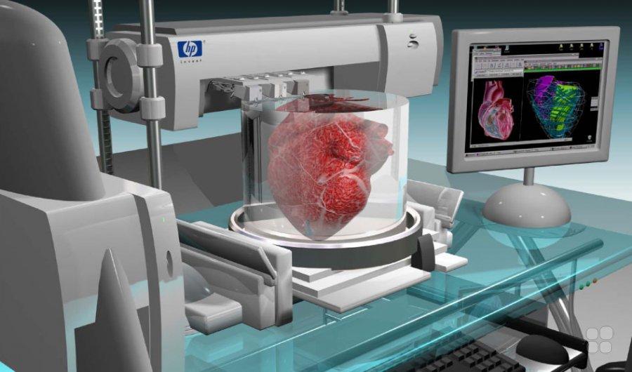Может ли 3D-печать новых органов и кожи однажды изменить будущее трансплантатов?