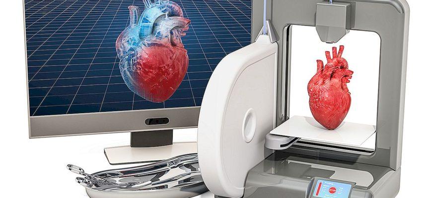 печать органов на принтере